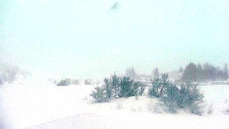 120110 schneesturm2