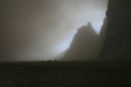 eruption-ash-horses-large bb