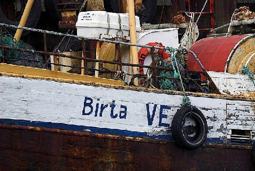 20100224094932_birta.jpg